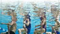 Aulas de hidroginástica, com a movimento fitness, até final de março!